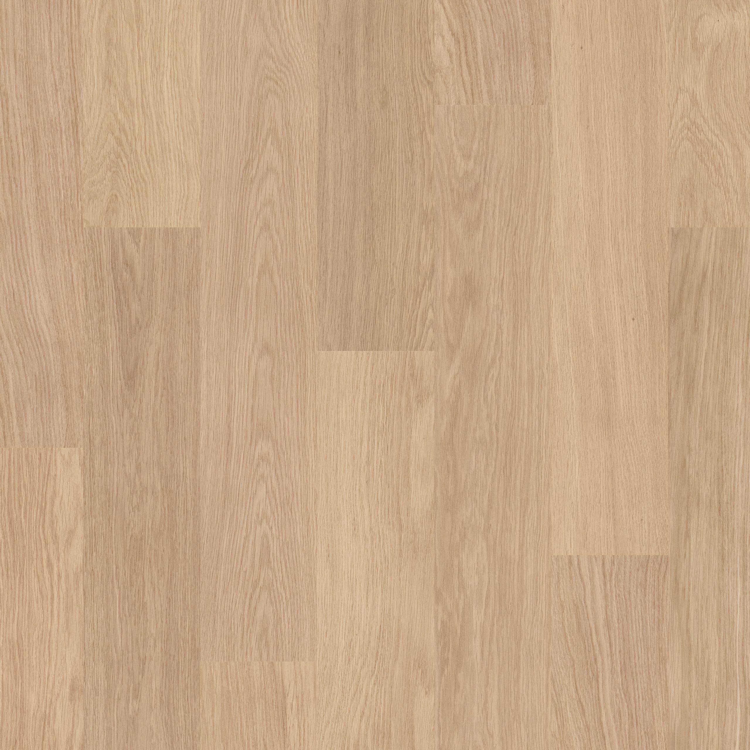 EL915_Topshot-Square HR