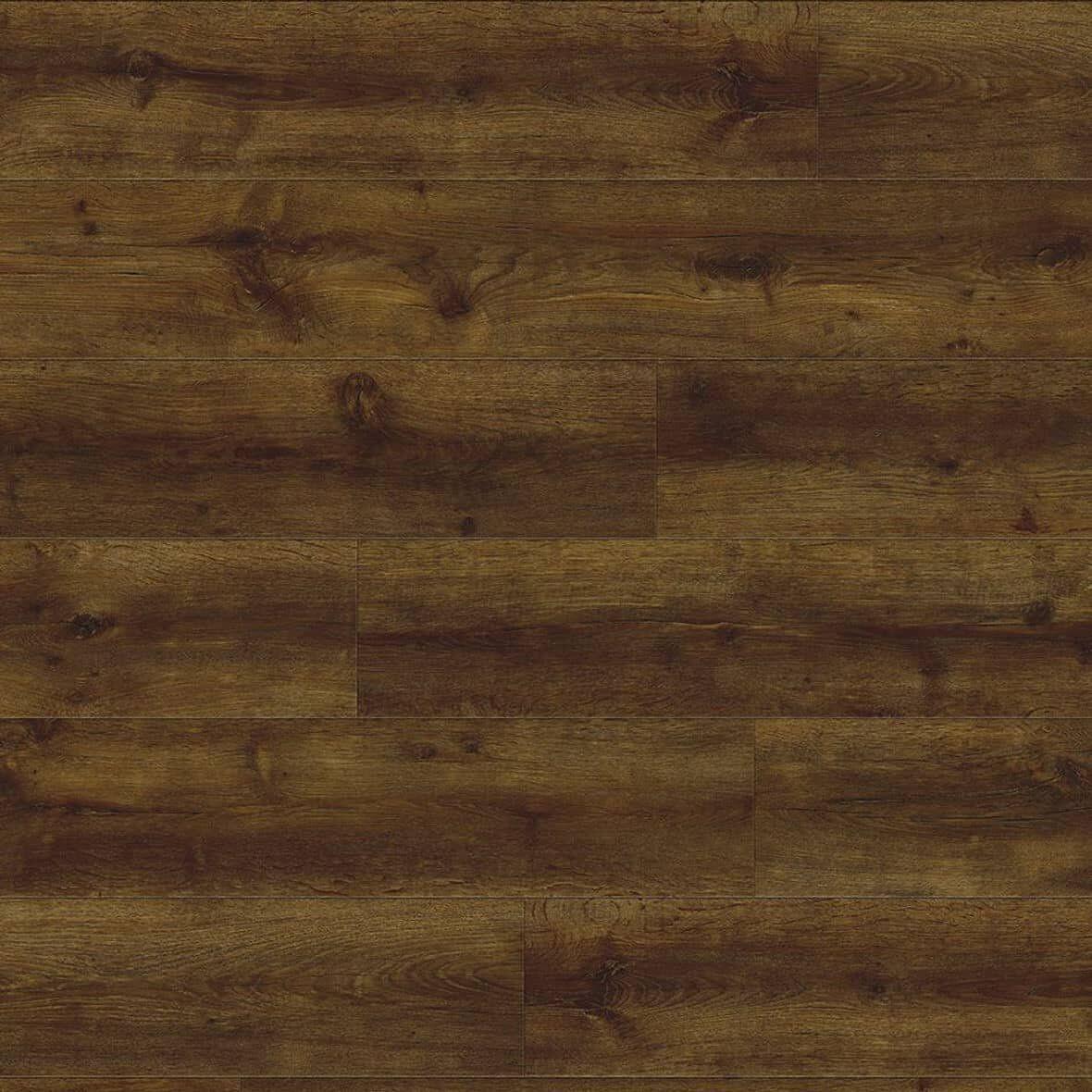 24886P major oak